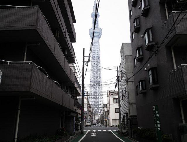 浮世絵で隅田川大花火